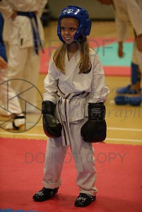 South East Open Karate